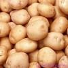 Плоды картофеля. Ноябрь