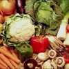 Плодоводство в приусадебном хозяйстве